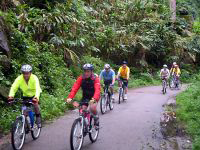 Cycling tour at Thattekkad Bird Sanctuary, Kerala.